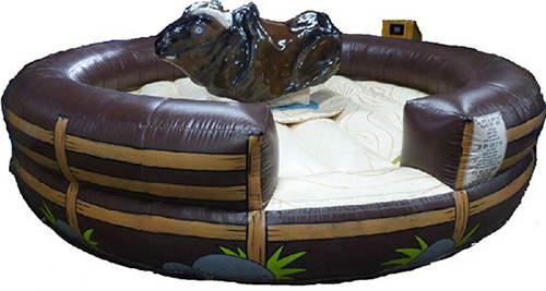 Our macho mechanical bull is designed to bring a western theme for your party. Also designed for smaller venues, this mechanical bull rental is perfect if space in your venue is tight. Rent one today for a party in Deerfield, Hazel Crest, Morton Grove, Oak Brook, or elsewhere in Illinois.