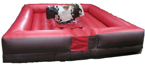 This bull sits in the middle of a rectangular square mattress. Available for mechanical bull rental in chicago.